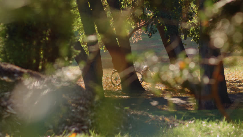 Autumn Landscape In City Park. Unidentified People Passing By And Relaxing. | Shutterstock HD Video #18468109