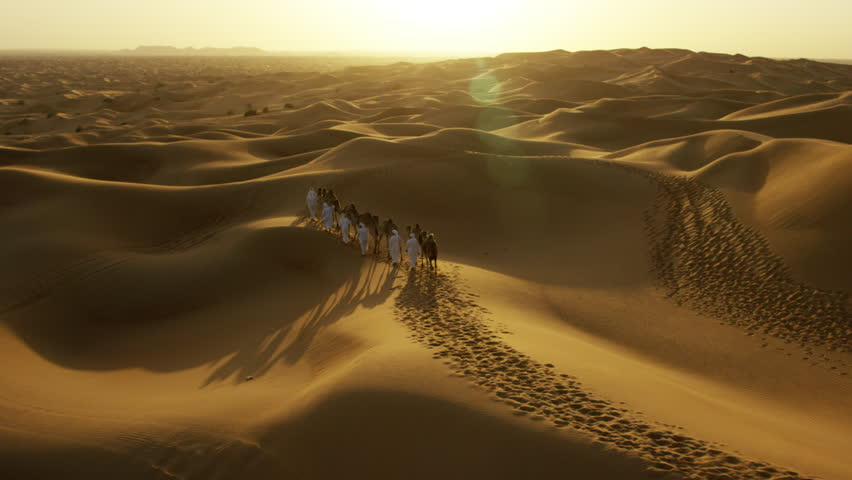 Aerial drone of camels being led by handlers across desert sand dunes   Shutterstock HD Video #18614474