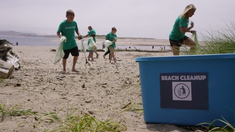 Group of volunteers cleaning up beach