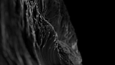 CG close-up Fractal abstract background animation with depth of field. Seamless loop. Black and white.