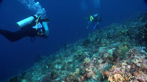 Group of scuba divers swimming on deep coral reef in Solomon Islands, HD, UP28270