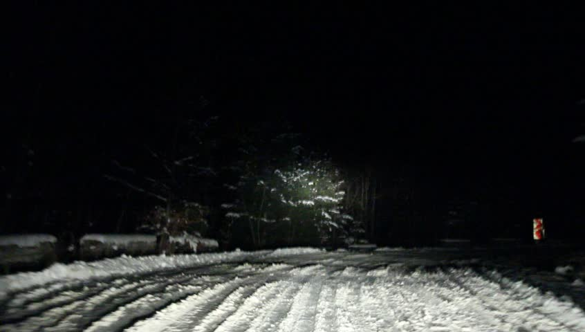 Mountain Forest Road On A Winter Night, Sinaia, Romania
