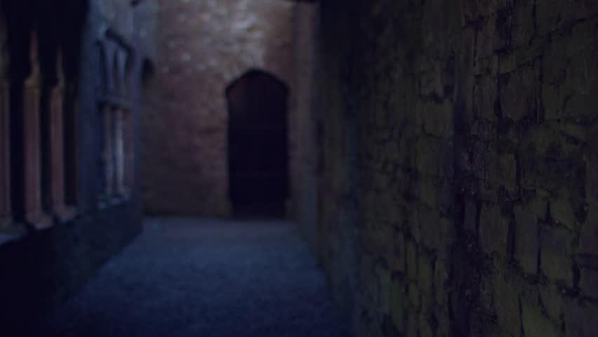 4k Shot of a Hall inside Abandoned Medieval Castle   Shutterstock HD Video #19387939