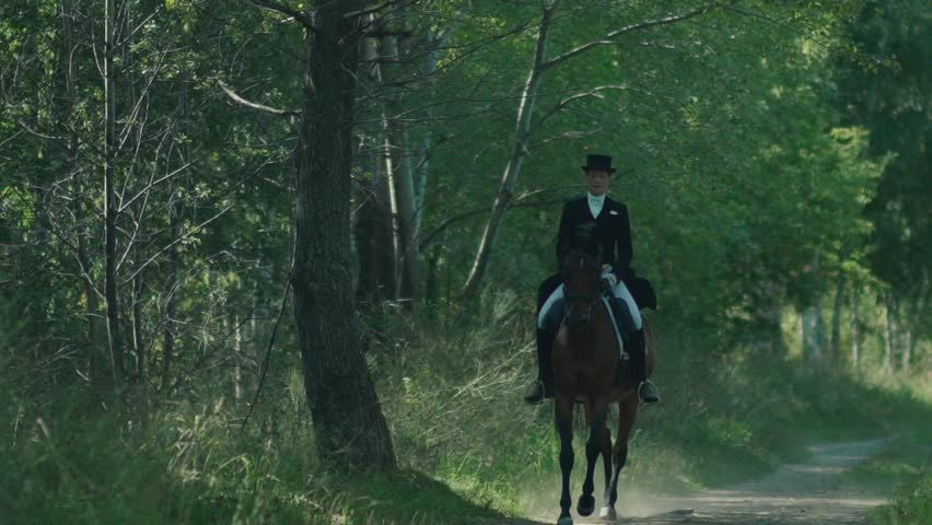 Horse riding in the summer forest. A woman in a long dress coat rider and horse. A horse with a rider rides on a shady forest gallop. Allure gallop. Middle Ages/ Horseback riding.