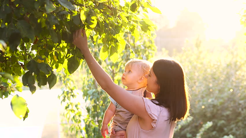 Happy young mother playing with her little baby son on sunshine warm autumn or summer day. Beautiful sunset light in the apple garden or in the park. Happy family concept 4k | Shutterstock HD Video #19394374