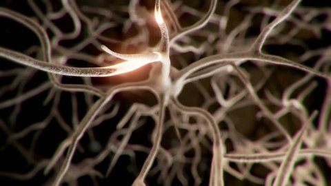 Active neuron cell in human brain emits pulses of energy.