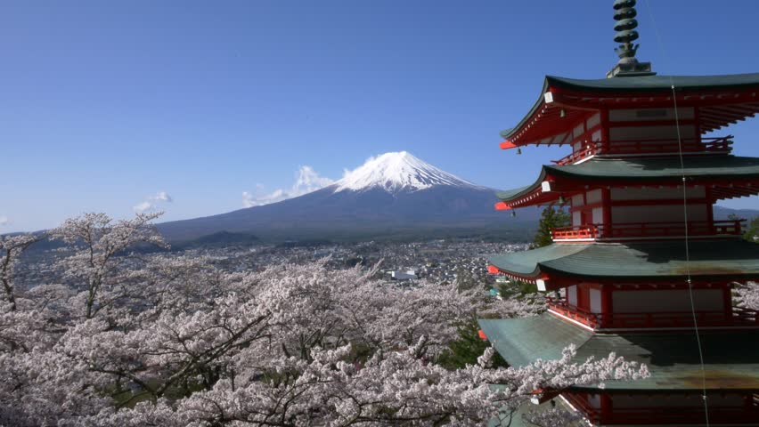Mt. Fuji with Chureito Pagoda in Spring, Fujiyoshida, Japan | Shutterstock HD Video #19538659