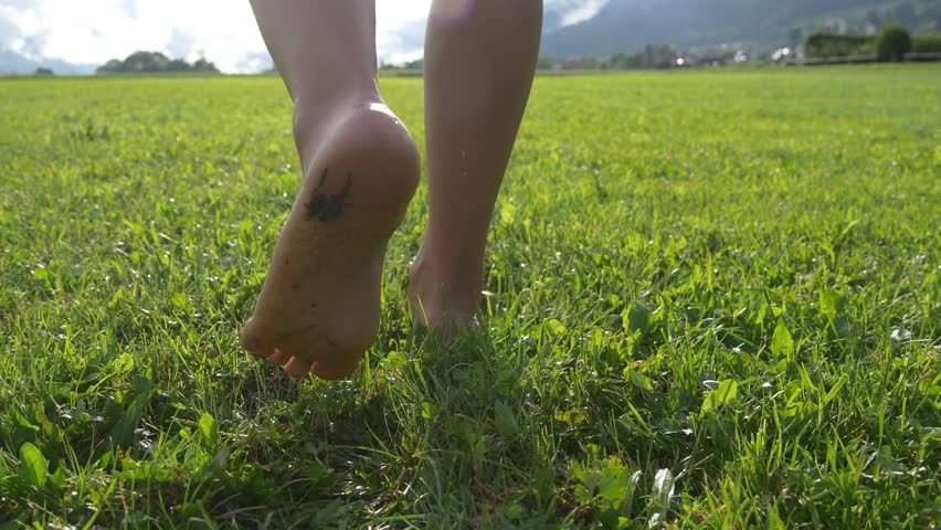 Female legs walk barefoot on soft grass with morning dew