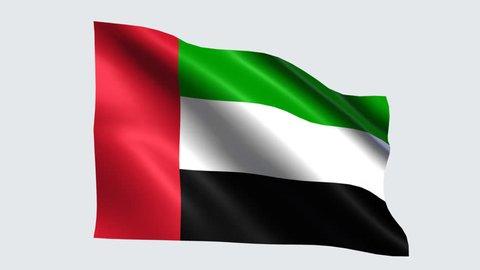 United Arab Emirates flag with transparent background