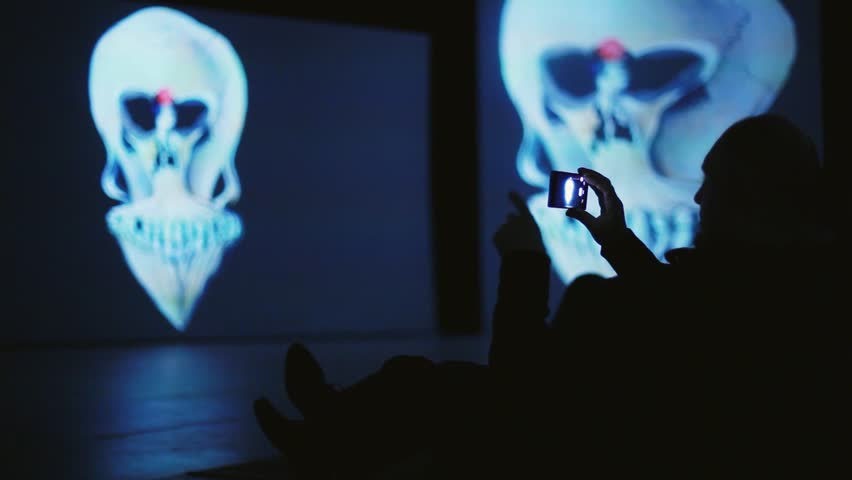 Silhouette of man takes picture from his smartphone on Art Exhibition by Dali. 1920x1080 | Shutterstock HD Video #20011189