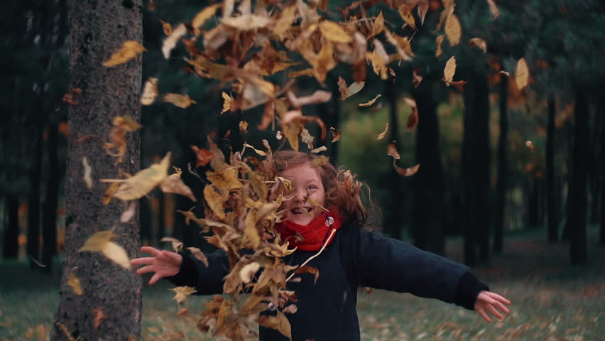 Funny, cheerful cute little girl jump throwing up a yellow autumn fallen leaves slow motion | Shutterstock HD Video #20204719