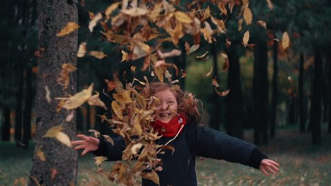 funny, cheerful cute little girl jump throwing up a yellow autumn fallen leaves slow motion