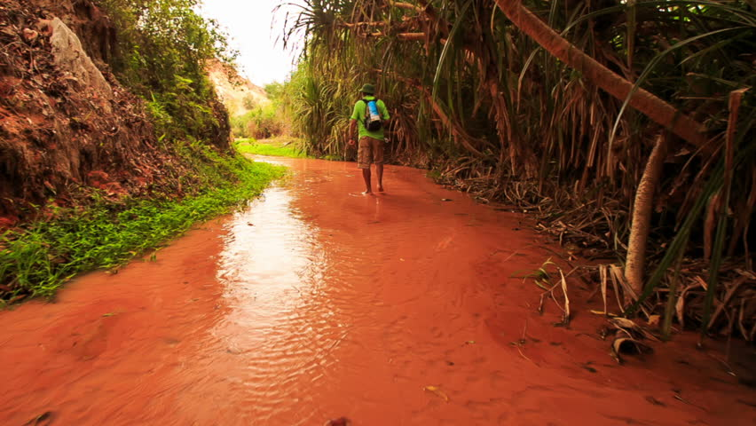 Tourist with backpack walks barefoot along sun reflection on shallow Fairy-Stream red waters past plants in Vietnam | Shutterstock HD Video #20358859
