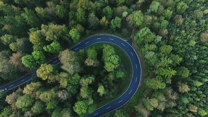 Winding road through the forest - aerial view | Shutterstock HD Video #20362669