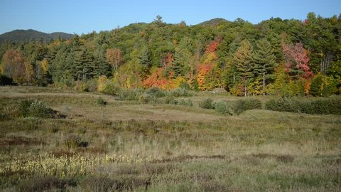 Rural wilderness scene in the Adirondacks with forest and Fall foliage