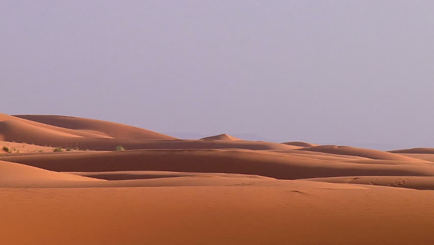 Header of desert