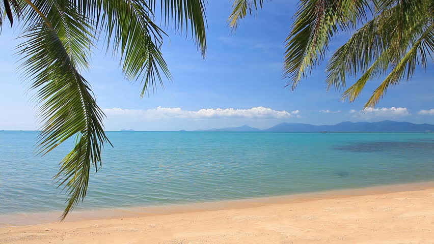 Hd Tropical Island Beach Paradise Wallpapers And Backgrounds: Tropical Beach In Sunny Day Stock Footage Video 3683705