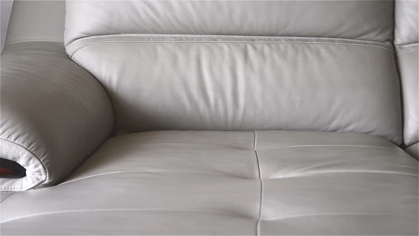 Man Cleaning Leather Sofa At Home