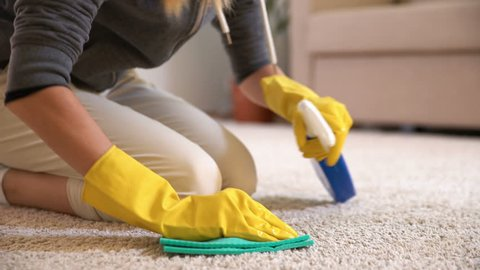 Housewife cleans the carpet with special detergent. Dolly Shot.