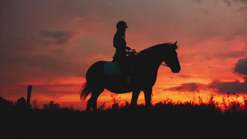 Silhouette Rider on Horse on Background of a Beautiful Orange Sunset #20752489
