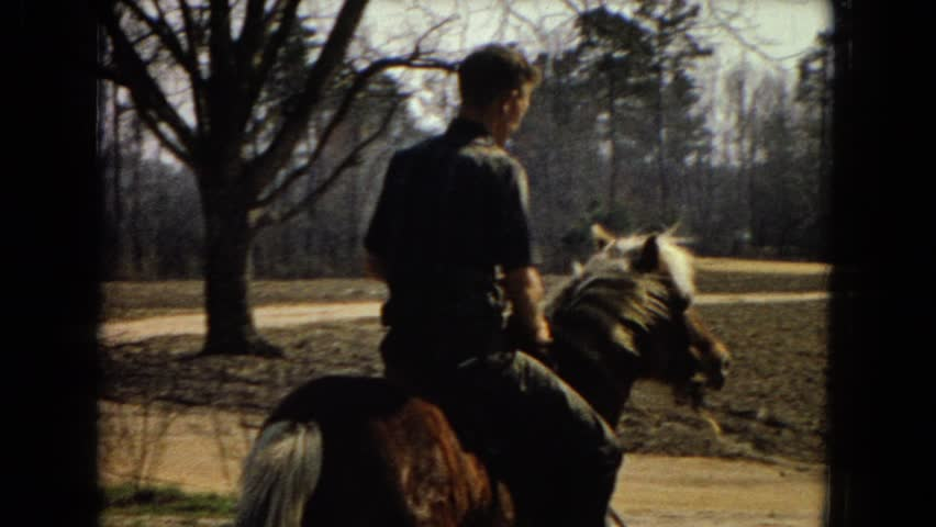 arizona 1967  horse jump rider fast professional slow pace   4k stock footage clip man pets and hugs his big french mastiff on hammock sunset 4k side      rh   shutterstock