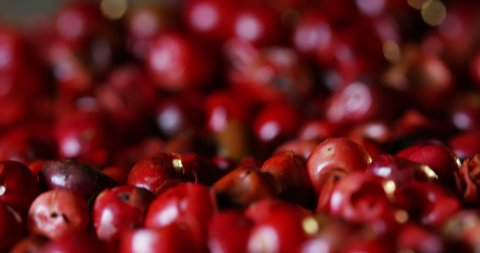 pink peppercorns placed on a kitchen table. Extreme macro of a Himalayan pepper berries. concept of fresh and dietary spices for cooking schools and vegans and dietary products.