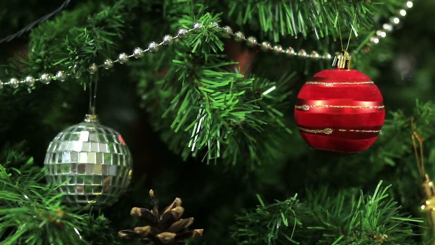 Milf looking at christmas trees photos 5
