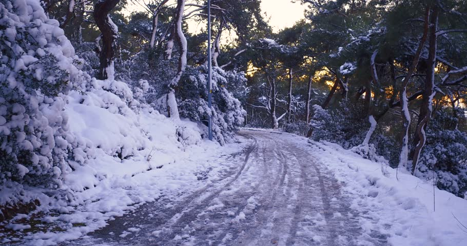 beautiful muree