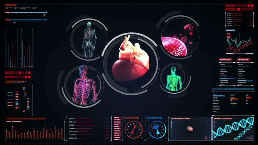 Scanning blood vessel, lymphatic, heart, circulatory system in digital display. Blue X-ray view.