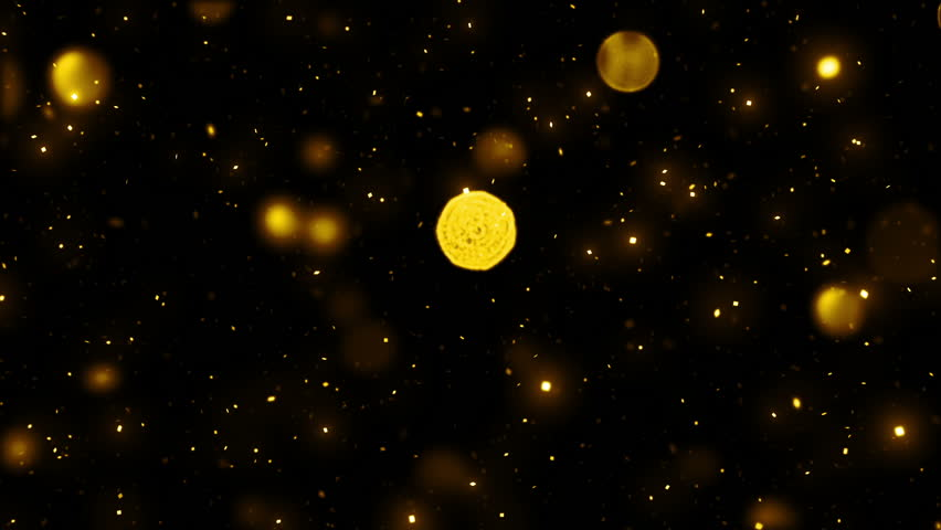 Beautiful Golden Snow Falling Seamless with DOF. Looped 3d Animation in Slow Motion. HD 1080.