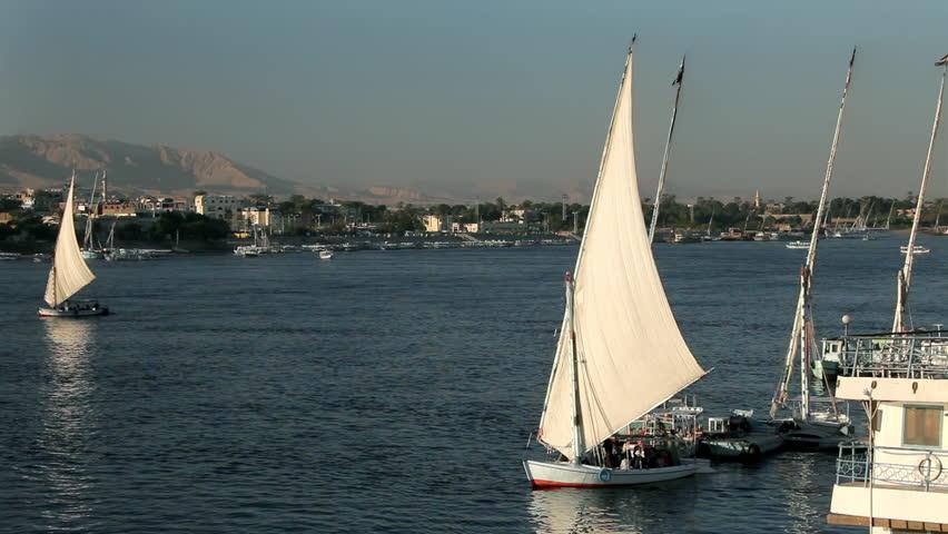 Feluccas In Full Sail; River Nile Luxor Egypt