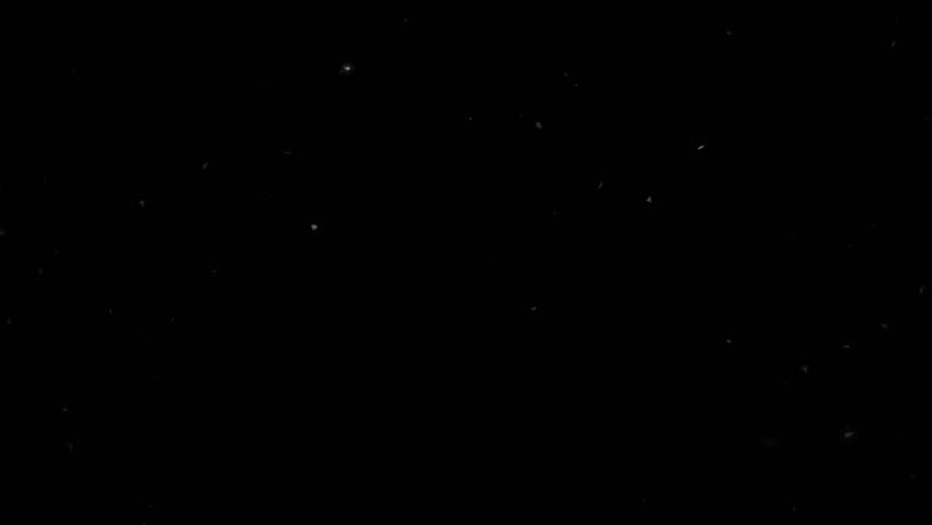 High quality motion animation representing snow falling, animated on a black background. #22746169