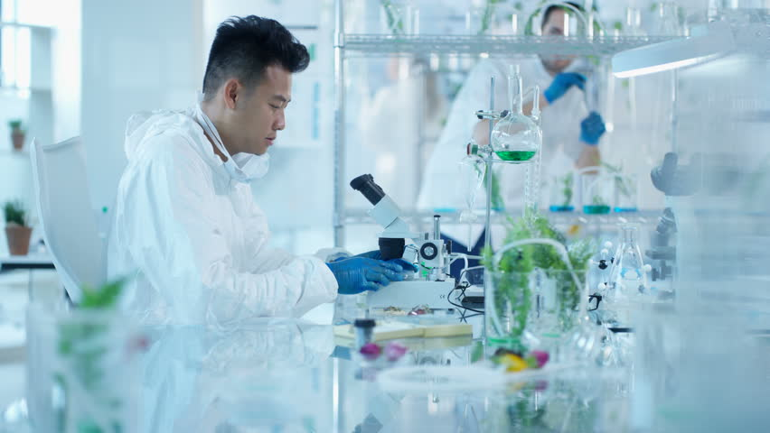 4k Research Scientists Studying Plant Life In Laboratory Dec 2016 Uk