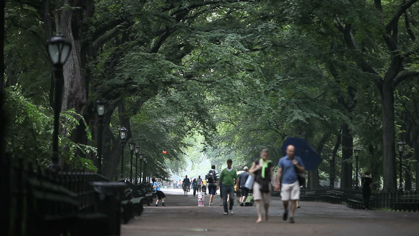 New York - Circa 2009: Central Park in 2009. People walking with umbrellas on a rainy day in Central Park in New York City, New York.