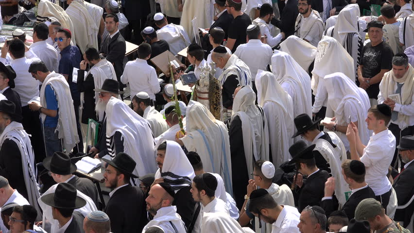 Jerusalem israel 19 october 2016 orthodox jewish men pray jerusalem israel 19 october 2016 jewish people pray at the western wall sciox Image collections