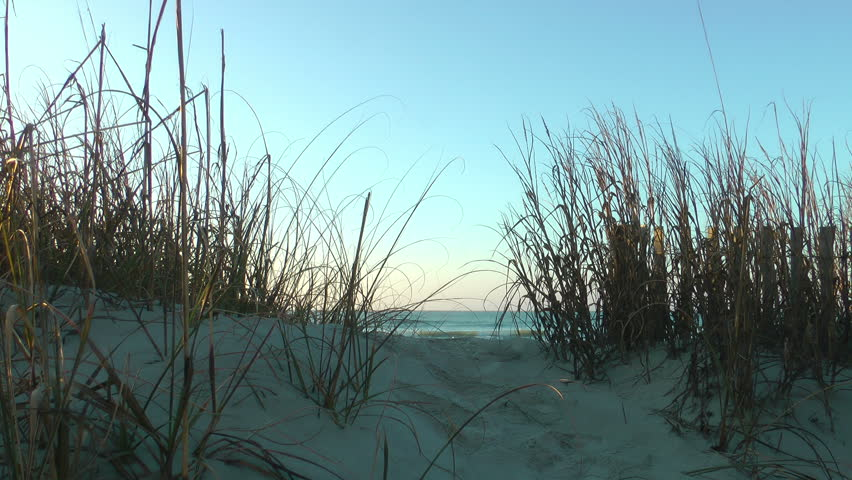 Sea view from sand dune behind sea grass