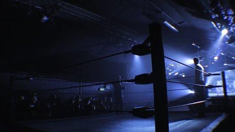 LONDON - FEBRUARY 21: Pro Wrestling Ring Lighting during BritWres-Fest 2011 on February 21, 2011