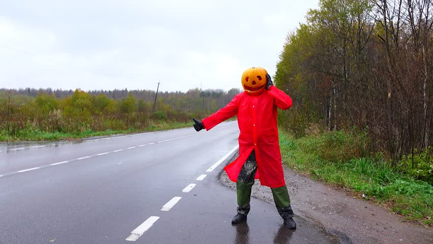 Funny man thumbing on road, carved pumpkin on his head. Halloween joke at rural road, rainy countryside. Jack Pumpkinhead costume from ripe squash plant with comical face and red raincoat
