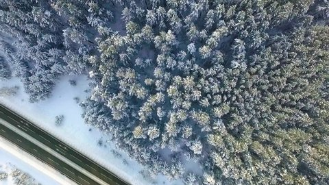 aerial view of winter Altay fields, forest and road