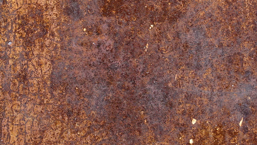 Close Up Of Indian Gaur S Skin Texture Dark Brown Hide Of