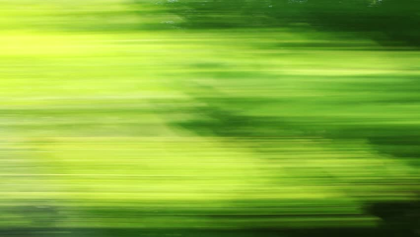 Car speeding on a road through green forest - side window blurred motion view