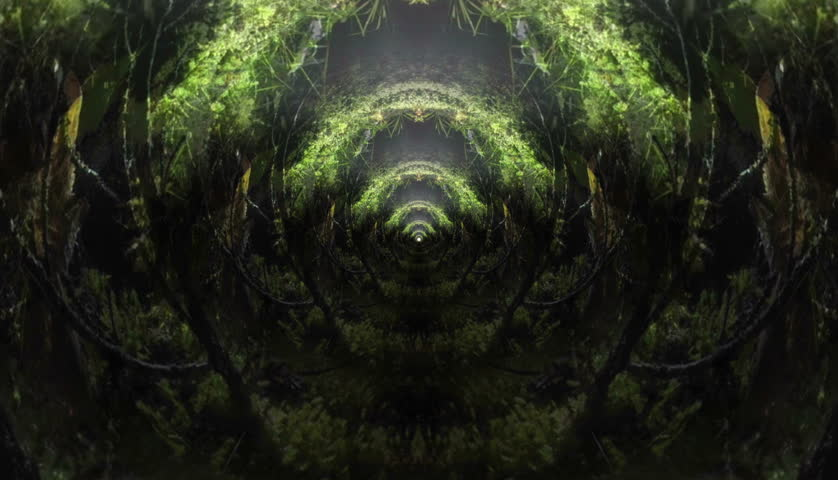 Botanical garden morphing corridor zoom abstract art