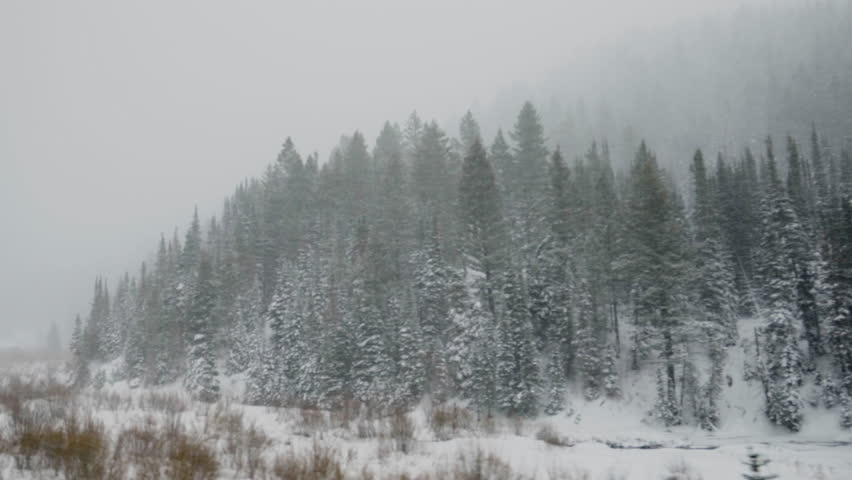 POV From Moving Car, Of Winter Landscape In Utah Mountains During A Snow Storm