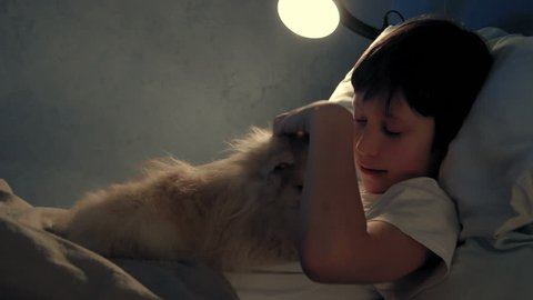 Boy resting in his bed in the evening and playing with his dog
