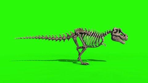 TRex Skeleton Walk Static Side Jurassic World 3D Rendering green Screen