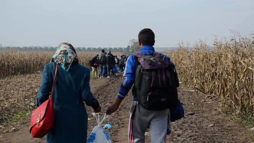 Refugees Running In Cornfield