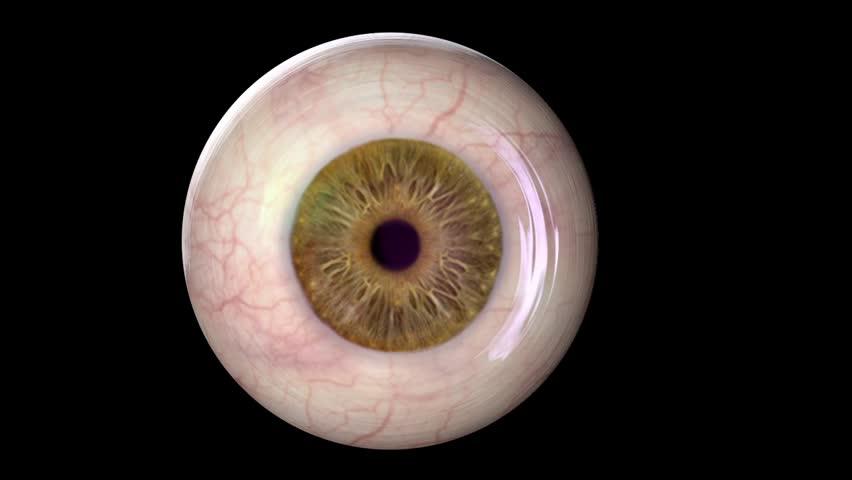 replacing someones eye balls - 852×480