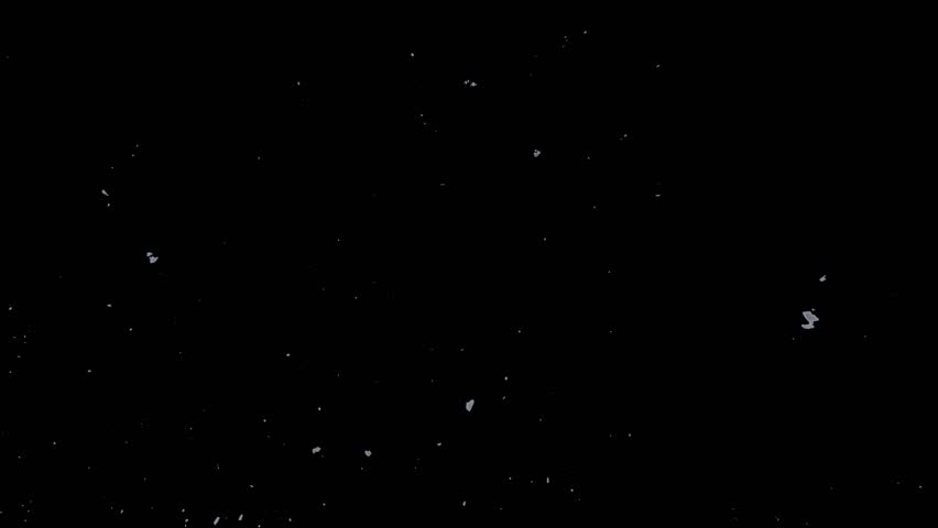 Falling down realistic natural snowflakes on black background | Shutterstock HD Video #24371369