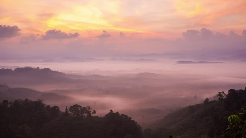 Moving mist in a morning, Phangnga , South of Thailand   Shutterstock HD Video #24381659