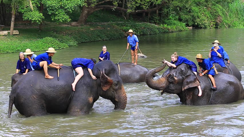 LAMPANG,THAILAND-January14: Mahout training the tourists who would like to truly experience riding and bathing the elephant at Thai Elephant Conservation Center Lampang,Thailand on January 14, 2016